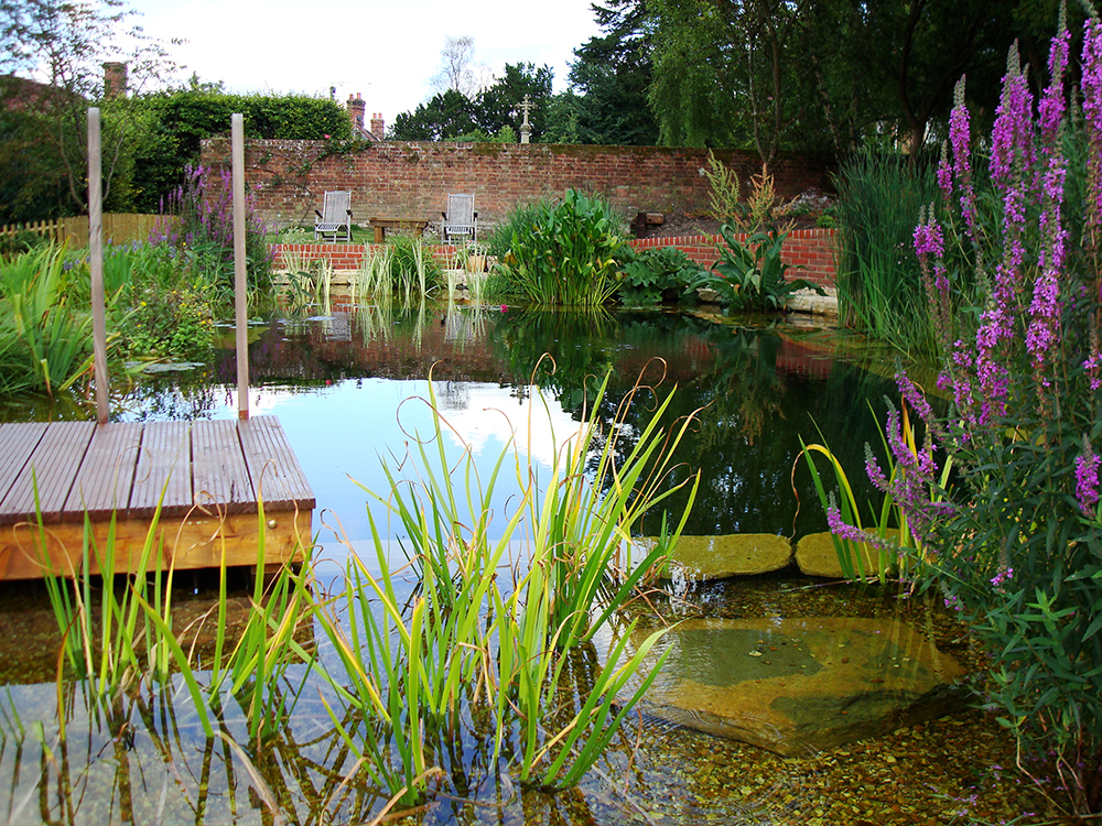 Natural Swimming Pools Warwickshire Swimming Pond Design