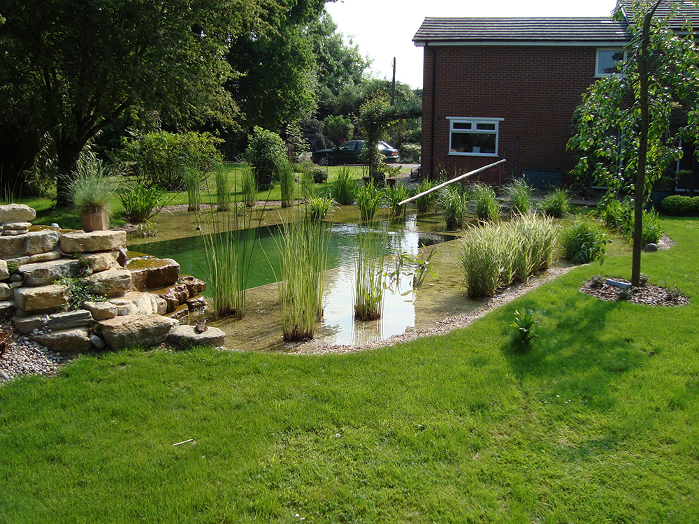 Natural swimming pools warwickshire swimming pond design for Water landscape design