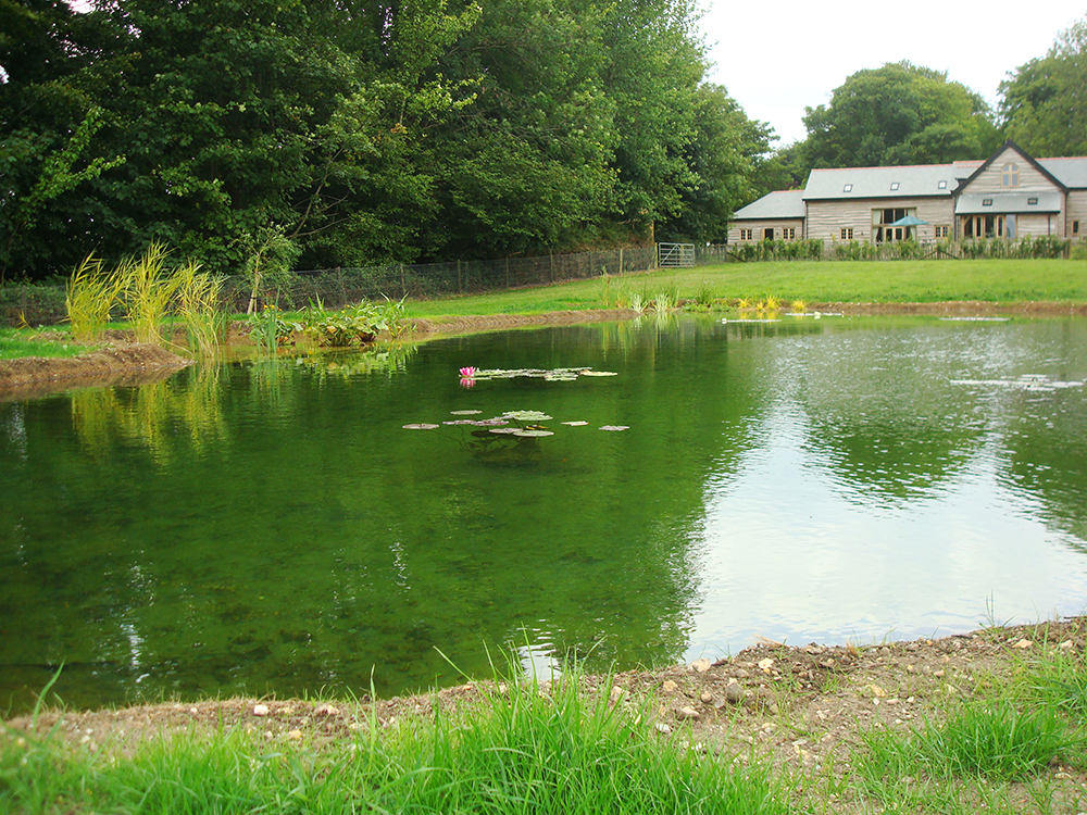 Pond design warwickshire swimming ponds staffordshire for Water landscape design
