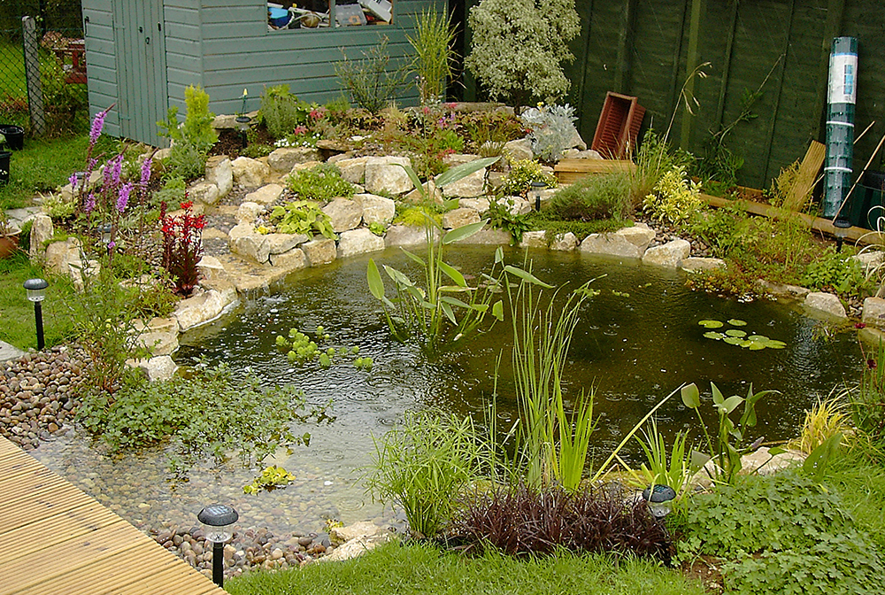 Pond design warwickshire swimming ponds staffordshire for Garden ponds uk