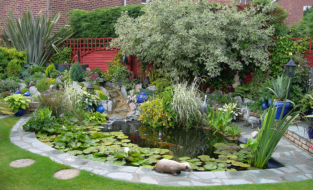 Pond design warwickshire swimming ponds staffordshire for Water garden landscaping designs